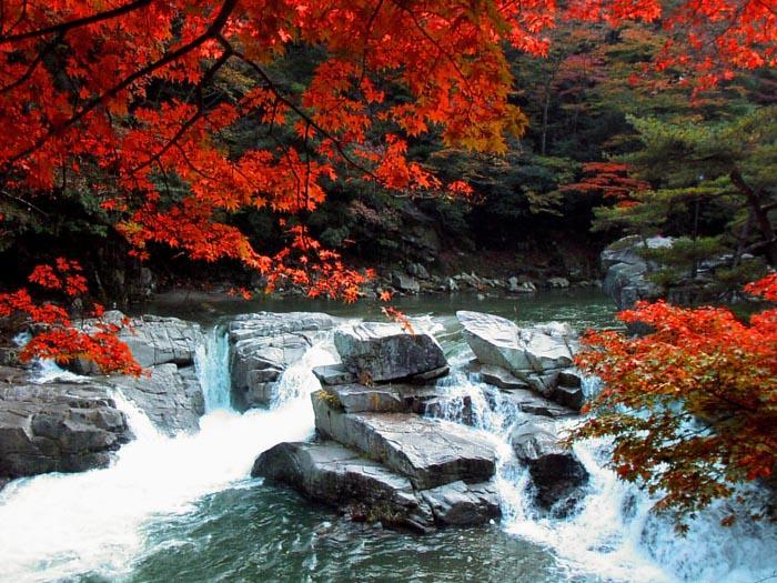 岡山の景勝地「奥津渓」で、自然...