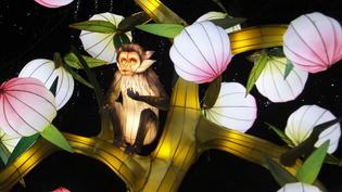 【イベント】アイルランドのダブリン動物園でリアルな動物や花ランタンのライトアップ!~Wild Lights~2017-2018