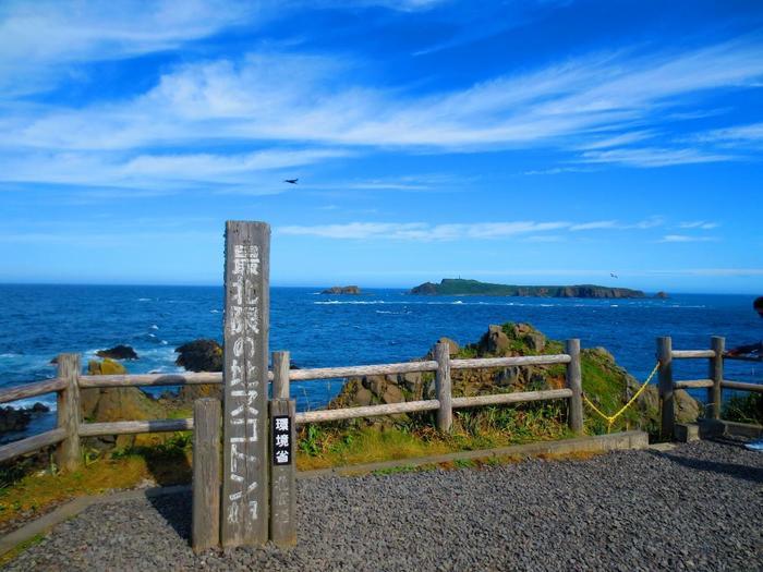 日本の最北端の離島、利尻島・礼文島へ! | たびこふれ