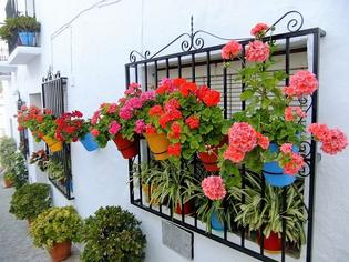 【前編】スペイン南部の人気観光地アンダルシア地方ってどんなところ?