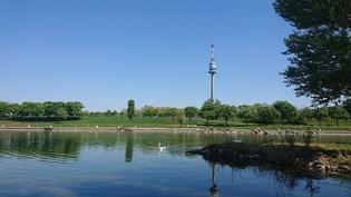 【新型コロナウィルス】オーストリア・ウィーンのからの明るい話題(5月9日現在)