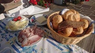 オーストリアの国民的なパン「センメル」の食べ方と歴史