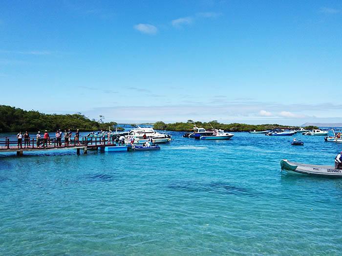 ガラパゴス諸島の画像 p1_35
