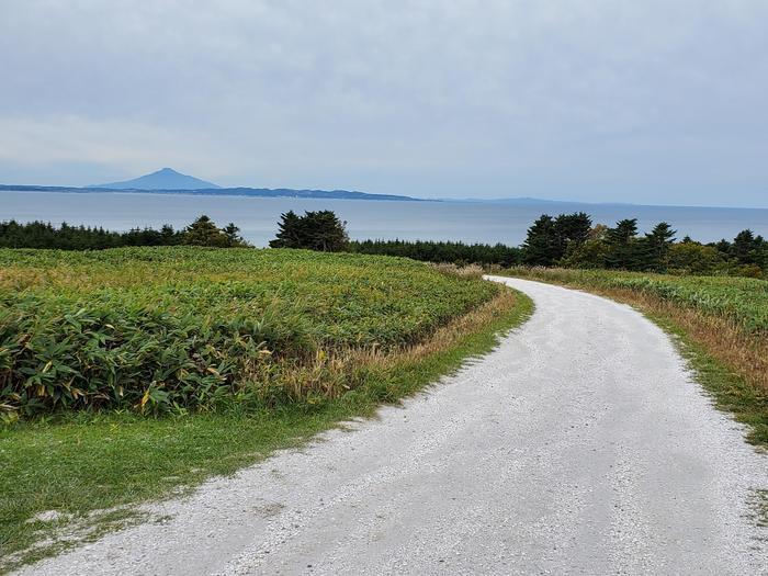 北海道・稚内の「白い道」は絶景が美しすぎる!   たびこふれ